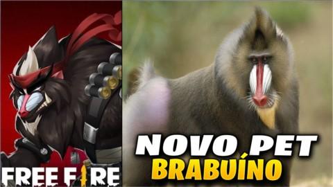Brabuíno: novo pet do Free Fire, confira as habilidades!